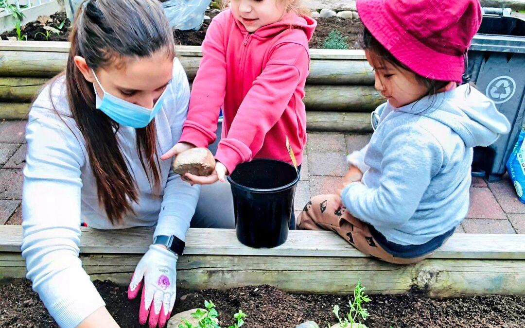 播下開啟孩子們知識之種子— 記早教中心春天的園藝活動點滴